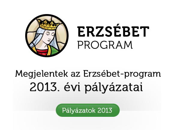 palyazat_2013